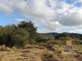 Campos y Fracciones en Pan de Azúcar (Ruta 60)