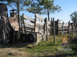 Campos y Fracciones en Ruta 12, Paraje Verdum, Lavalleja