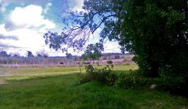 Chacra en Cerrillos al sur (Los Cerrillos)