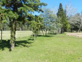 Chacra en El Pejerrey (Ruta Interbalnearia)