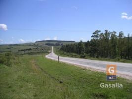 Chacra en Pan de Azùcar (Ruta 60)