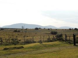 Chacra en Paraje km 110 (Pan de Azúcar)