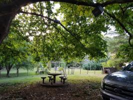 Chacras con Casa en Lavalleja (Lavalleja Ruta 60)