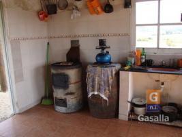 Chacras con casa en Pan de Azúcar (Pan de Azúcar Ciudad)
