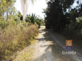 Chacras Rurales (1-20has) en Ruta 9 (Ruta 9 Cerros Azules)