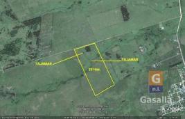 Fracciones de Campos en Paraje km 110 (Pan de Azúcar)