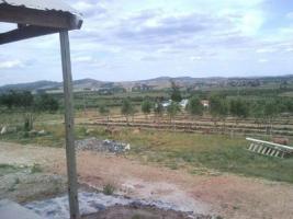 Fracciones de Campos en Paraje km 110 Ref.884