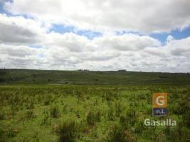 Fracciones de Campos en Puntas de Mataojo (Ruta 12)