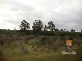 Fracciones de Campos en Ruta Interbalnearia (Km. 90 (Ruta Interbalnearia)