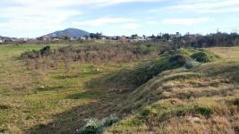 Terreno en Pan de Azucar, Ciudad (Pan de Azúcar ciudad)
