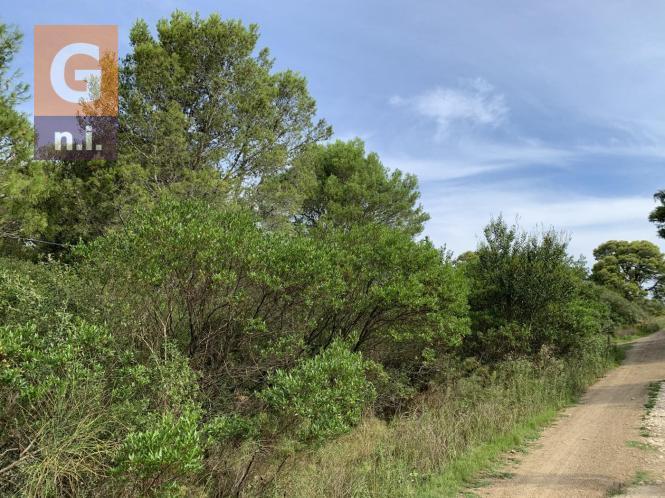 Terreno en Piriápolis (Playa Hermosa)
