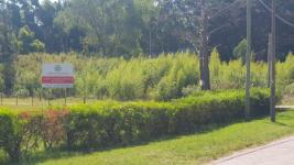 Terreno en Punta del Este (Punta Ballena) Ref. 714
